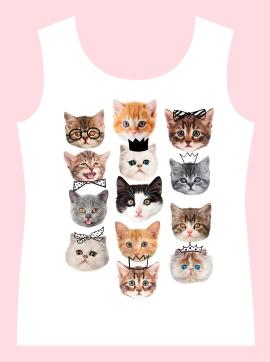 257-gatinhos