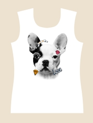 508 - Bulldog