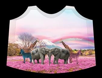 Elefantes - 26552414